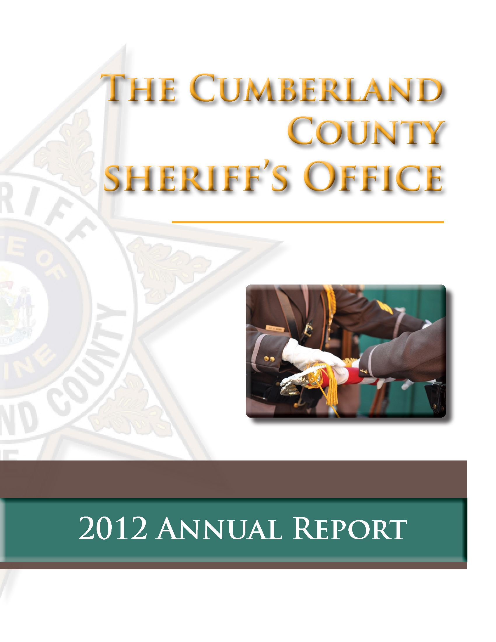 2012 CCSO single page annual report_Page_01
