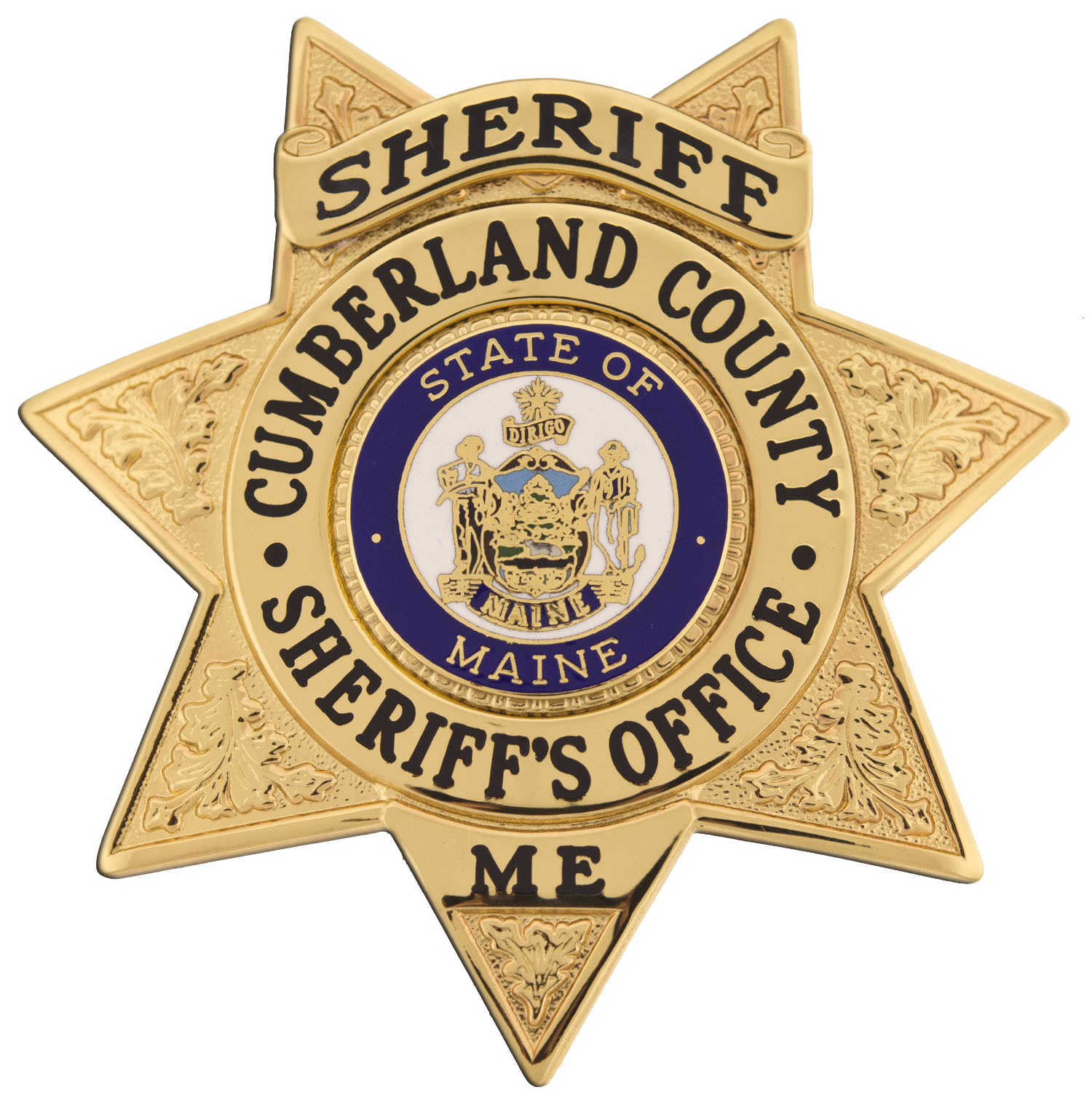 CCSO Sheriff badge